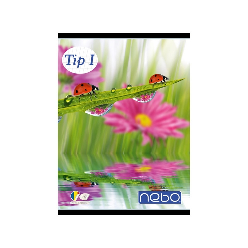 Caiet A5 tip I 24 file - NEBO