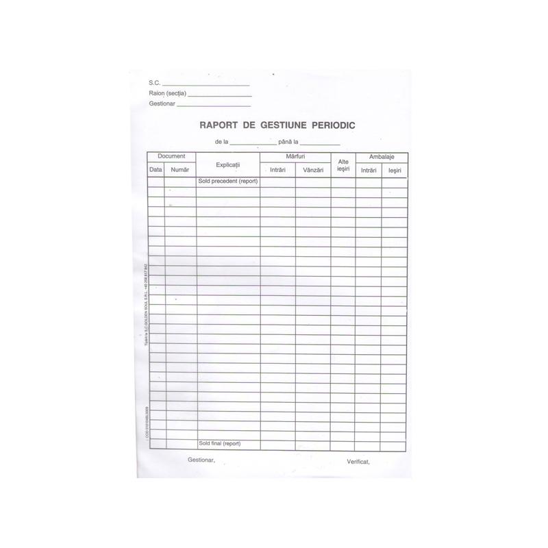 Raport de gestiune periodic A4 100 file